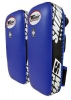 Twins Muay Thai Pads